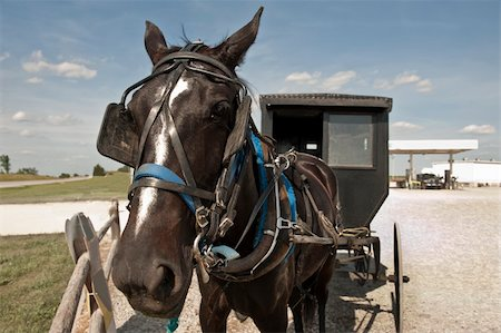 rural gas station - In a clash of cultures, an Amish horse and buggy are parked on a gravel lot beside a modern gas station Stock Photo - Budget Royalty-Free & Subscription, Code: 400-06141587