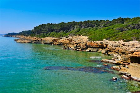 a view of different coves in Bosc de la Marquesa, Tarragona, Spain Stock Photo - Budget Royalty-Free & Subscription, Code: 400-06175440