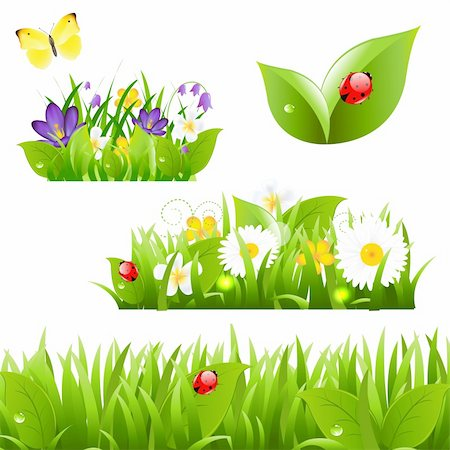 Flowers With Grass Butterfly And Ladybug, Isolated On White Background, Vector Illustration Stock Photo - Budget Royalty-Free & Subscription, Code: 400-06171828