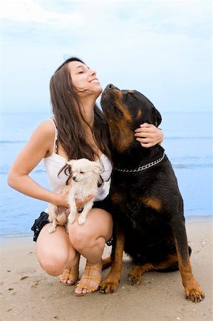 dog kissing girl - young girl and her two dogs on the beach Stock Photo - Budget Royalty-Free & Subscription, Code: 400-06204706