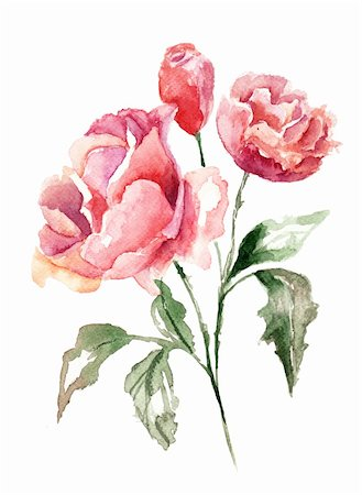 peonies graphics - Beautiful flowers, Watercolor painting Stock Photo - Budget Royalty-Free & Subscription, Code: 400-06202784