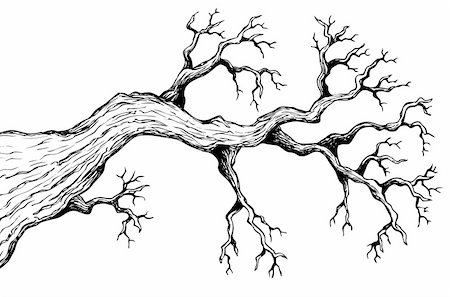Tree theme drawing 3 - vector illustration. Stock Photo - Budget Royalty-Free & Subscription, Code: 400-06326541