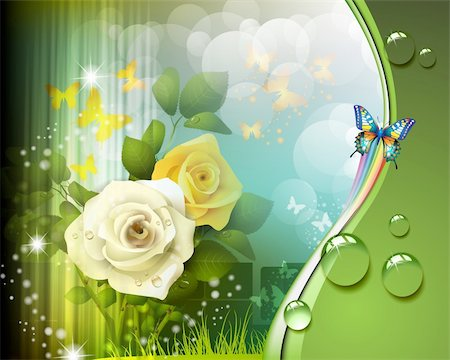 Background with roses and butterflies Stock Photo - Budget Royalty-Free & Subscription, Code: 400-06355864