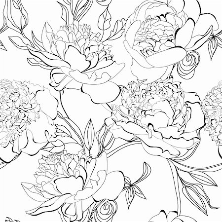 peony illustrations - Monochrome seamless pattern with Peony flowers Stock Photo - Budget Royalty-Free & Subscription, Code: 400-06357503