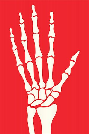 silhouette skeleton hand on a red background Stock Photo - Budget Royalty-Free & Subscription, Code: 400-06394180