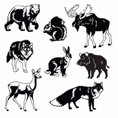 vector set of most popular forest animals,Eurasia beasts,black and white images isolated on white background Stock Photo - Budget Royalty-Free & Subscription, Code: 400-06410755