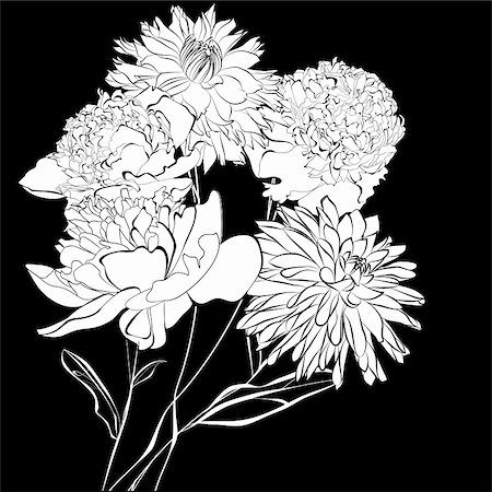 Template for card Peony flowers, Monochrome illustration Stock Photo - Budget Royalty-Free & Subscription, Code: 400-06413013