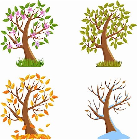 Spring, Summer, Autumn and Winter Tree Illustration. Stock Photo - Budget Royalty-Free & Subscription, Code: 400-06472922
