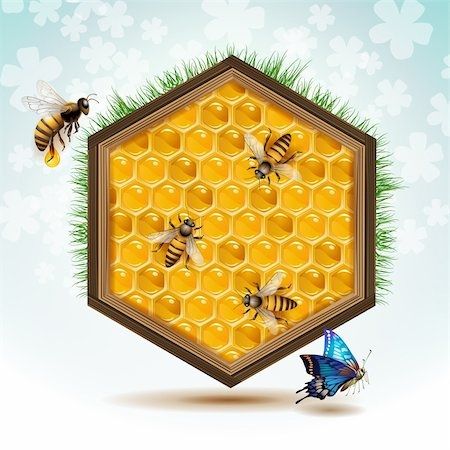 Wood frame with bees and honeycombs Stock Photo - Budget Royalty-Free & Subscription, Code: 400-06513580