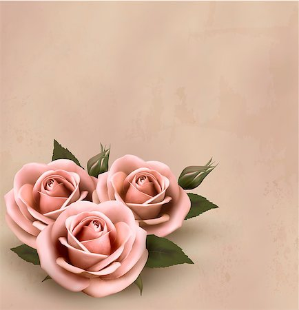 Retro background with beautiful pink roses with buds. Vector illustration. Stock Photo - Budget Royalty-Free & Subscription, Code: 400-06557723
