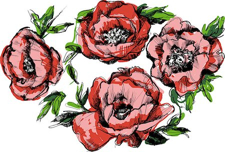 peonies clipart - a sketch of a beautiful wreath of flowers peonies Stock Photo - Budget Royalty-Free & Subscription, Code: 400-06633747