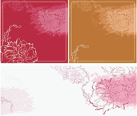 peonies background - Vector elements with peony Stock Photo - Budget Royalty-Free & Subscription, Code: 400-06695590