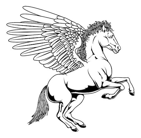 Pegasus horse with wings rearing on its back legs in black and white outline Stock Photo - Budget Royalty-Free & Subscription, Code: 400-06698962