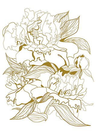 gold pen drawing peonies bouquet Stock Photo - Budget Royalty-Free & Subscription, Code: 400-06692106
