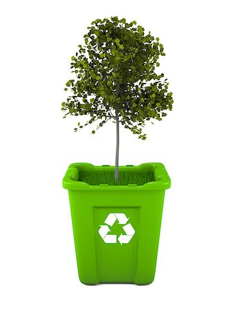 Paper recycling concept with Italian Maple tree growing from green recycle bin Stock Photo - Budget Royalty-Free & Subscription, Code: 400-06735714