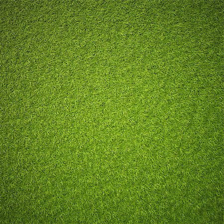 Green grass field background texture. Stock Photo - Budget Royalty-Free & Subscription, Code: 400-06736955