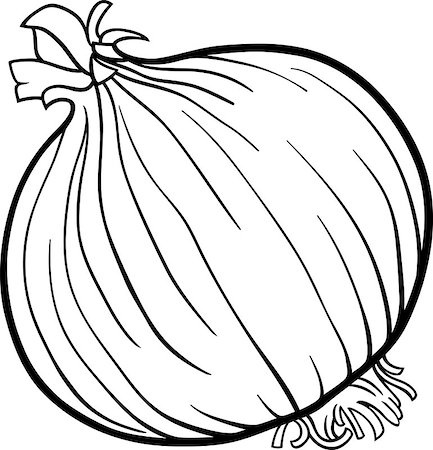 Black and White Cartoon Illustration of Onion Root Vegetable Food Object for Coloring Book Stock Photo - Budget Royalty-Free & Subscription, Code: 400-06747735