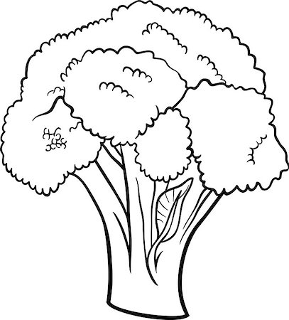 Black and White Cartoon Illustration of Broccoli Vegetable Food Object for Coloring Book Stock Photo - Budget Royalty-Free & Subscription, Code: 400-06747747