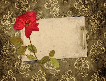Old cards and dry rose for scrapbooking design Stock Photo - Budget Royalty-Free & Subscription, Code: 400-06748525