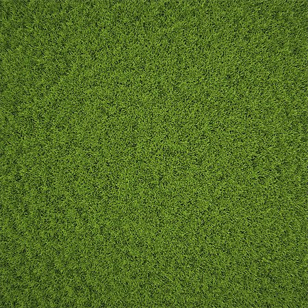 Green grass field background texture. Stock Photo - Budget Royalty-Free & Subscription, Code: 400-06741423