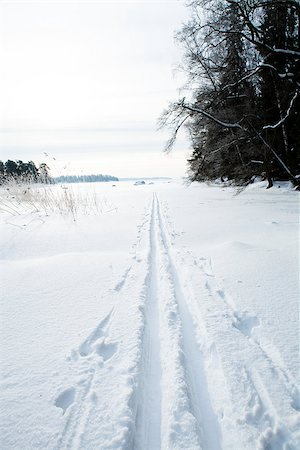 Winter landscape with cross-country skiing tracks in snow on overcast day Stock Photo - Budget Royalty-Free & Subscription, Code: 400-06760574