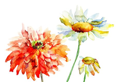 Beautiful decorative flowers, watercolor illustration Stock Photo - Budget Royalty-Free & Subscription, Code: 400-06789134