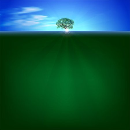 abstract Nature background with sunrise and green tree Stock Photo - Budget Royalty-Free & Subscription, Code: 400-06850101