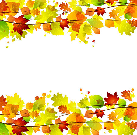 Autumn leaves background with space for text Stock Photo - Budget Royalty-Free & Subscription, Code: 400-06927806