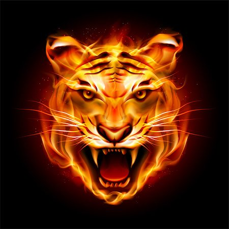 Head of a tiger in tongues of flame. Illustration on black Stock Photo - Budget Royalty-Free & Subscription, Code: 400-07036079