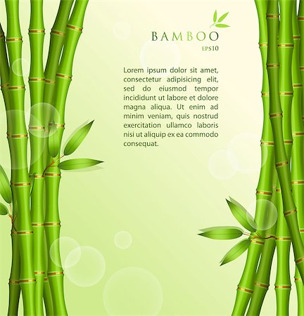 florist vector - Vector illustration of Background with green bamboo Stock Photo - Budget Royalty-Free & Subscription, Code: 400-07036419