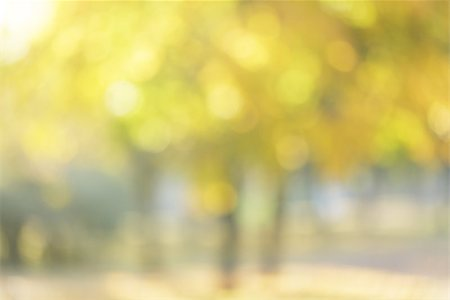 autumn out of focus background, good for backdrop Stock Photo - Budget Royalty-Free & Subscription, Code: 400-07114840