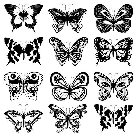 Set of twelve black butterfly silhouettes on a white background, hand drawing vector illustration Stock Photo - Budget Royalty-Free & Subscription, Code: 400-07115305