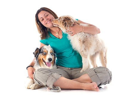 dog kissing girl - purebred australian shepherds and woman  in front of white background Stock Photo - Budget Royalty-Free & Subscription, Code: 400-07123600