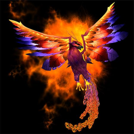 frbird - The Phoenix bird is a legend and symbol of renewal and new beginnings. Stock Photo - Budget Royalty-Free & Subscription, Code: 400-07326601