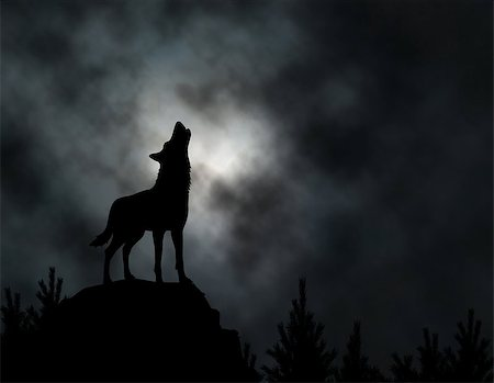 Editable vector silhouette of a howling wolf with moonlit clouds background made using a gradient mesh Stock Photo - Budget Royalty-Free & Subscription, Code: 400-07328099