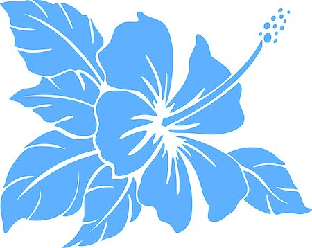 Hibiscus flower silhouette on a white background Stock Photo - Budget Royalty-Free & Subscription, Code: 400-07338432