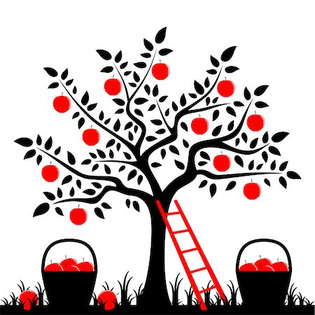 vector apple tree, ladder and baskets of apples, Adobe Illustrator 8 format Stock Photo - Budget Royalty-Free & Subscription, Code: 400-07331924