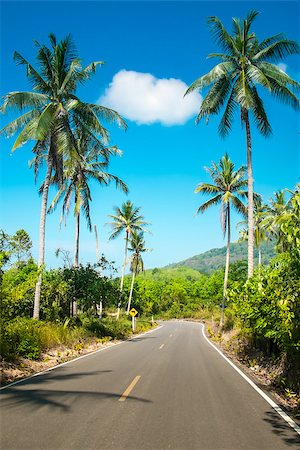 Nice asfalt road with palm trees against the blue sky and cloud Stock Photo - Budget Royalty-Free & Subscription, Code: 400-07405545
