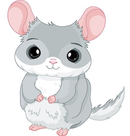 Illustration of lovely grey chinchilla Stock Photo - Budget Royalty-Free & Subscription, Code: 400-07430121