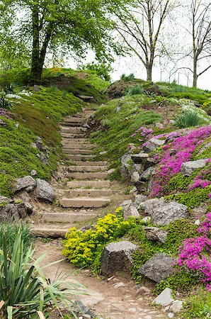 Stone stairs in the green park surrounded by beautiful flowers Stock Photo - Budget Royalty-Free & Subscription, Code: 400-07430601