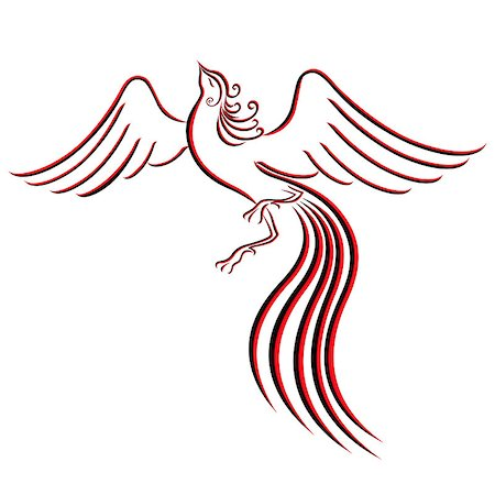 frbird - Black and red graceful Firebird contour isolated over white. Hand drawing vector illustration Stock Photo - Budget Royalty-Free & Subscription, Code: 400-07464708