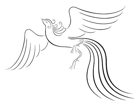 frbird - Black graceful Firebird contour isolated over white. Hand drawing vector illustration Stock Photo - Budget Royalty-Free & Subscription, Code: 400-07462465