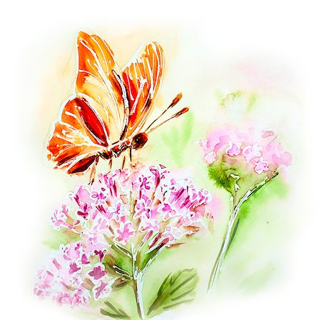 Painted watercolor card with summer flowers and butterfly Stock Photo - Budget Royalty-Free & Subscription, Code: 400-07505780