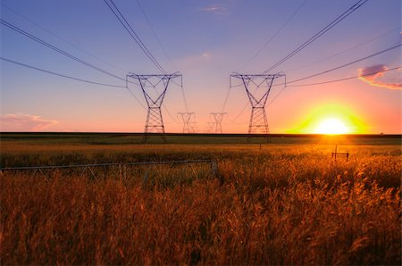 South African electricity power lines with sun at dusk on the highveld. Stock Photo - Budget Royalty-Free & Subscription, Code: 400-07503338