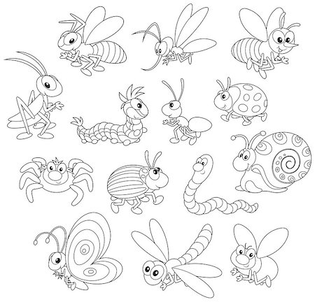 Collections of cartoony insects, black and white outline illustrations on a white background Stock Photo - Budget Royalty-Free & Subscription, Code: 400-07549270