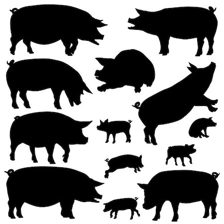 Set of editable vector silhouettes of pigs and piglets Stock Photo - Budget Royalty-Free & Subscription, Code: 400-07626869