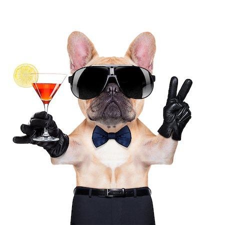 french bulldog holding a  glass of red martini  with peace or victory fingers , ready to toast,  isolated on white background Stock Photo - Budget Royalty-Free & Subscription, Code: 400-07832860