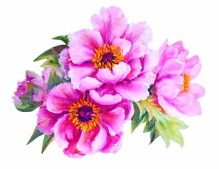 peony illustrations - Peonies in vase, oil painting on canvas Stock Photo - Budget Royalty-Free & Subscription, Code: 400-07893042