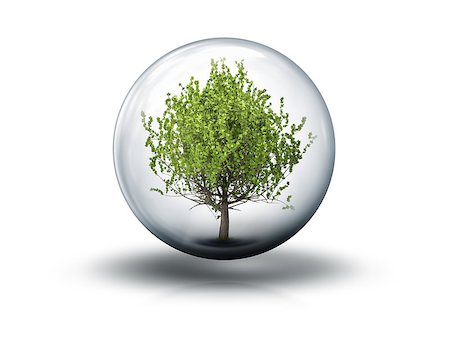 An image of a nice bubble with a tree Stock Photo - Budget Royalty-Free & Subscription, Code: 400-07893748