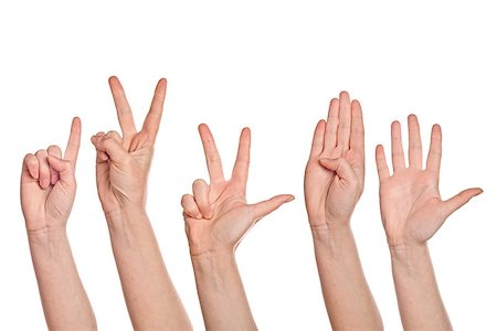 Caucasian white female hands counting from one to five fingers, isolated on white background. Stock Photo - Budget Royalty-Free & Subscription, Code: 400-07902543